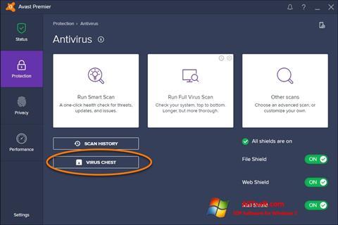 Skærmbillede Avast Windows 7