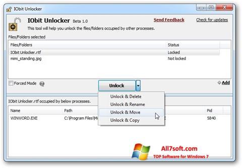 Skærmbillede IObit Unlocker Windows 7