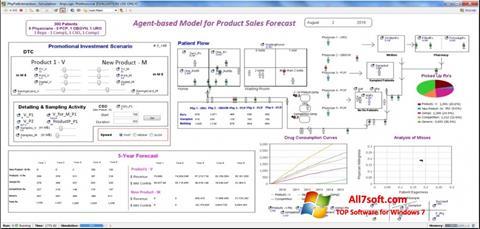 Skærmbillede AnyLogic Windows 7